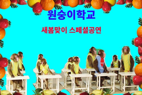 원숭이학교 스페셜공연